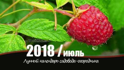 лунный календарь рыбака на 2019 год